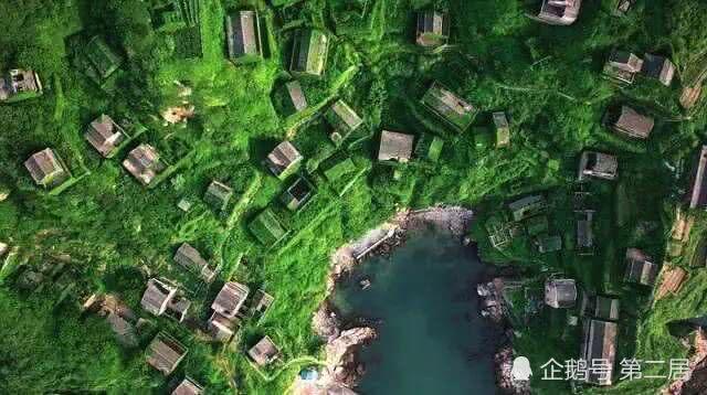 说出来你可能不信,东海中竟然藏着一个绿野仙踪