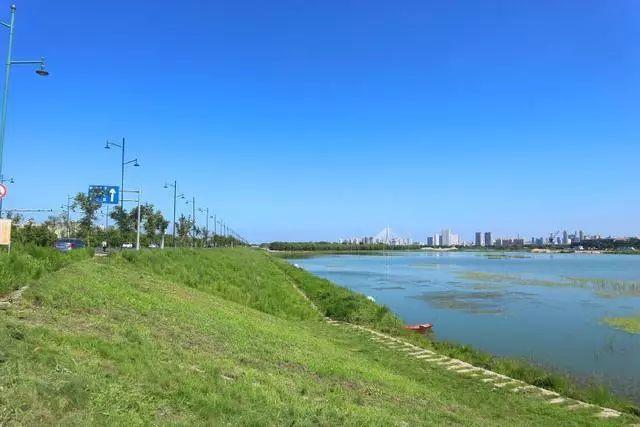 """哈尔滨这条在大美湿地里的景观路,""""滨水大道""""蜿蜒百公里"""