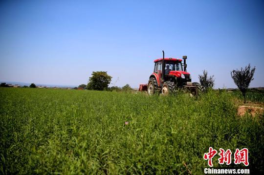 农产品售卖难如何解决?脱贫后为何返贫?来看权威解答