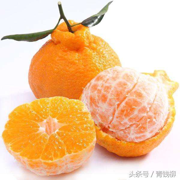 湘西州柑橘产业发展历程及展望