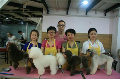 宠物美容培训师时刻问自己的两个问题
