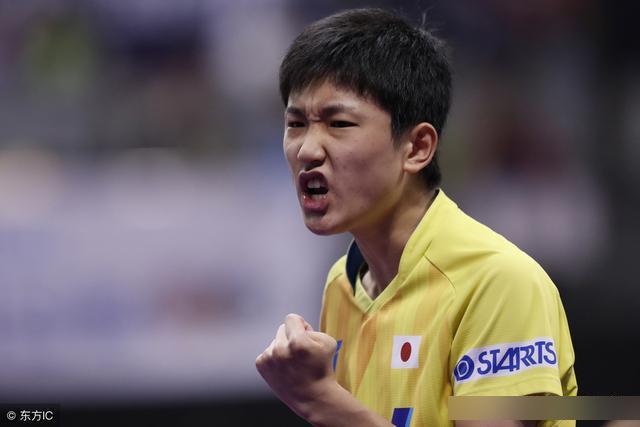 张本智和放弃打乒乓球?日本乒协已经给出确切回应!
