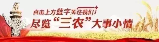 农村保健品骗局肆意横行,怎么破?中国乡村之声将邀请权威专家来支招!