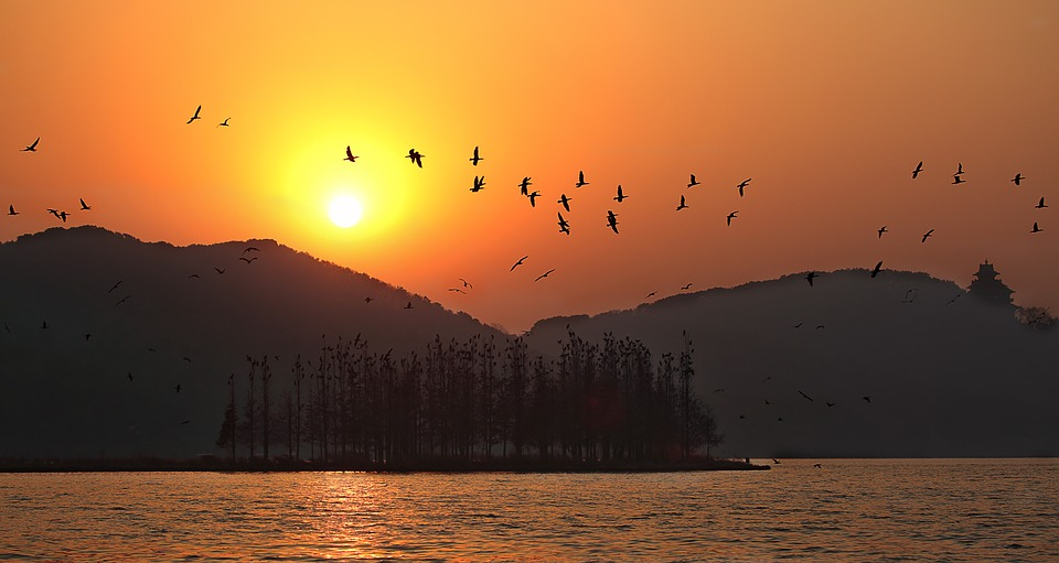 长沙,武汉与成都,哪里的风景更吸引你呢?_外链代发