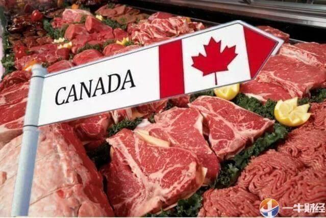 「乐百家手机网页页」加拿大猪肉步油菜籽后尘?中国宣布4大措施!特鲁多最担心事来了?