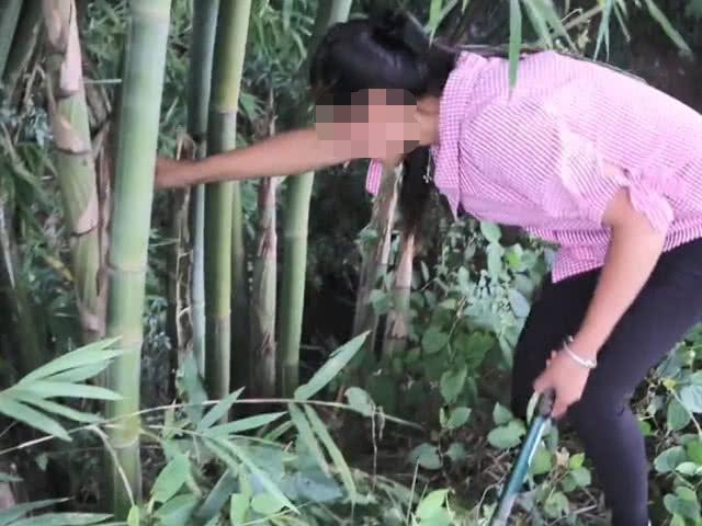 竹林里一种肥嘟嘟的野味,如今想吃到可不容易,油炸着吃有奶油味