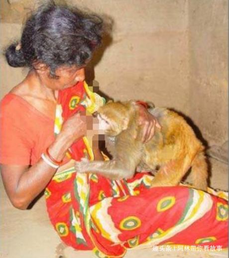 女子捡猴子做宠物一起生活,孩子降临后,丈夫难以淡定