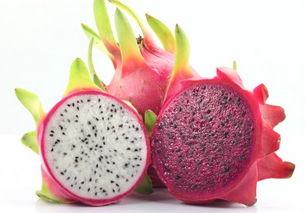 夏季养生,推荐三种食物,排出肝毒,减肥塑身,皮肤更健美!