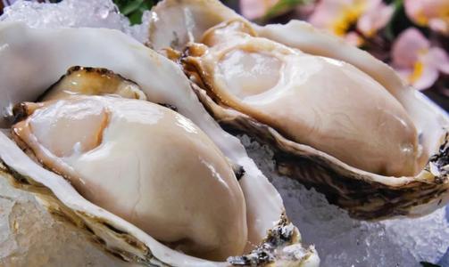 朋友在日本吃生蚝,吃了100个都不觉得腻,结账时激动得手抖