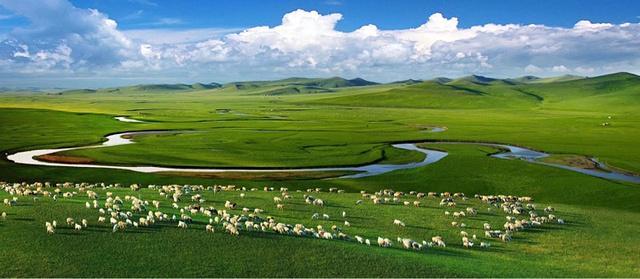 夏天选择去内蒙古呼伦贝尔大草原旅游,体验草原天堂之美景!