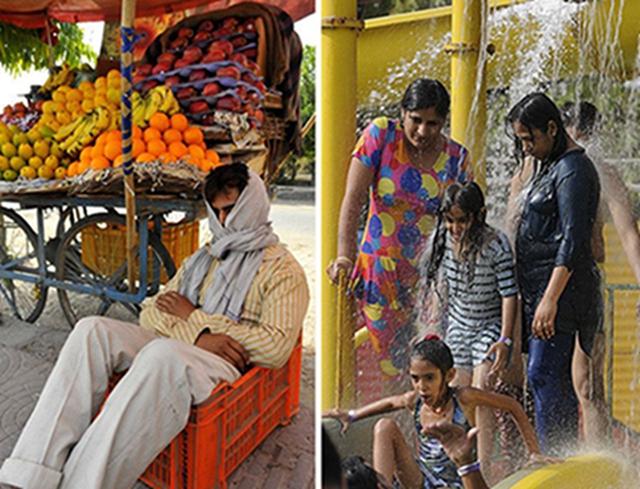 走进印度,看当地人的避暑方式,不愧是走在奇葩前沿的国家