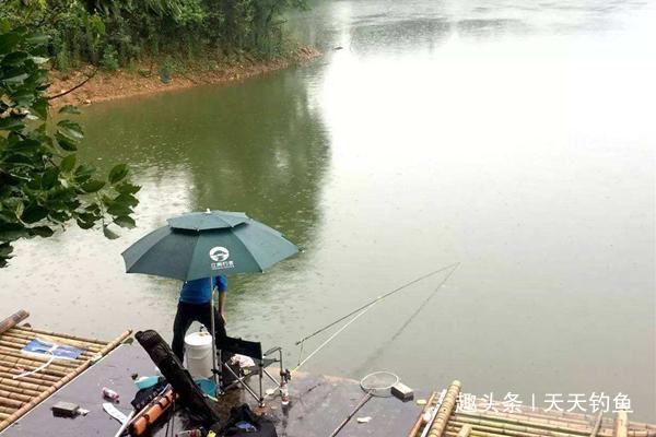 夏季下雨天,应该怎么钓鱼?