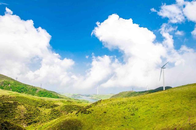 何必去内蒙古!贵州就有大草原,被誉为人间的净土,超适合去避暑