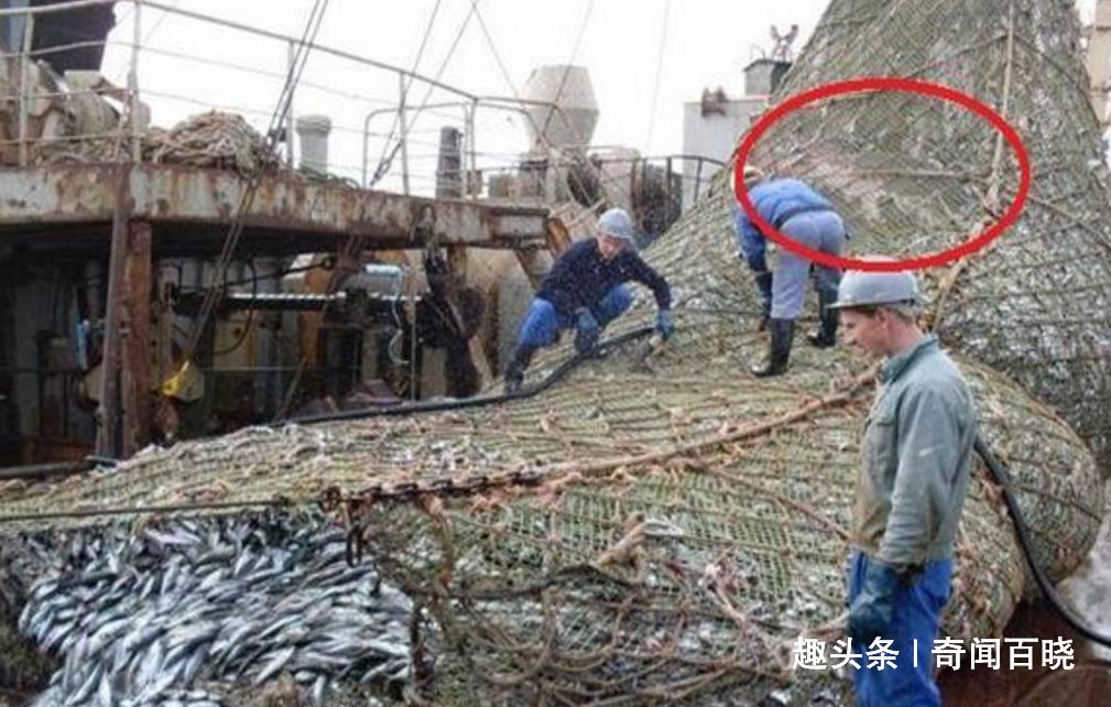 渔夫渔网中发现异物,看到时脸色大变,船长:什么怪物?