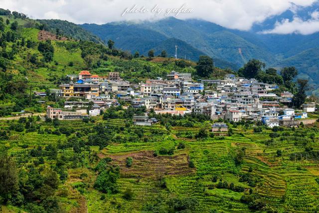 云南最有钱的村藏在大山深处,家家都是千万富翁,满山都是摇钱树