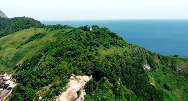巴西蛇岛,每平米就有一条毒蛇,最贵一条卖20万,明令禁止登岛