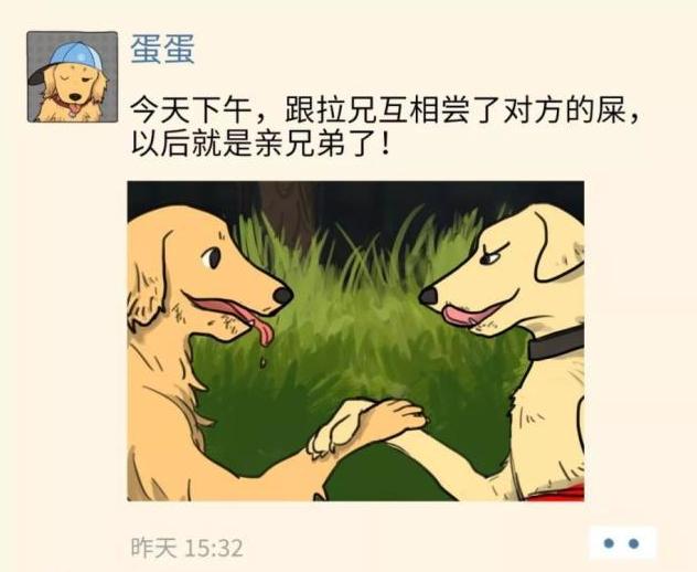 如果狗狗也有朋友圈......人类:诸位都是大佬,请收下我的膝盖!