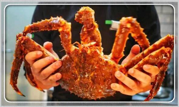 「澳门新葡亰x999fun」为什么吃帝王蟹只吃蟹腿没有吃蟹身?
