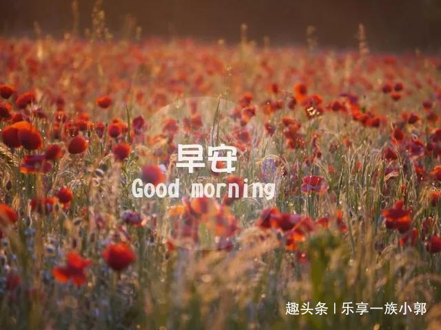微笑着面对人生,就能看到希望的曙光,早安