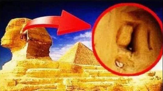 解密|狮身人面像耳朵背后藏秘密机关!网友:啊!关系世界命运