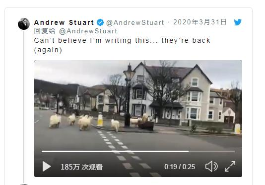 封城期间,英国小镇被一群野山羊占领!