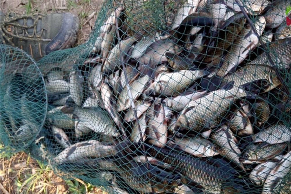 早春釣魚,氣溫忽高忽低是難點,能做到這些要點,收獲有保證