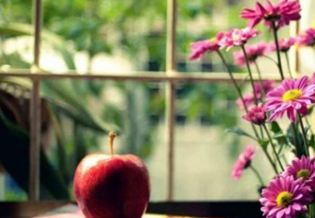 一天一苹果,疾病远离我,春天多吃苹果,身体可能会有什么好处?
