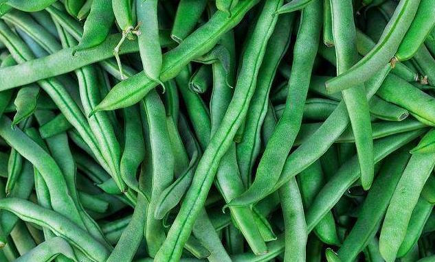 天热,多吃蔬菜身体好,清爽刮油又解腻