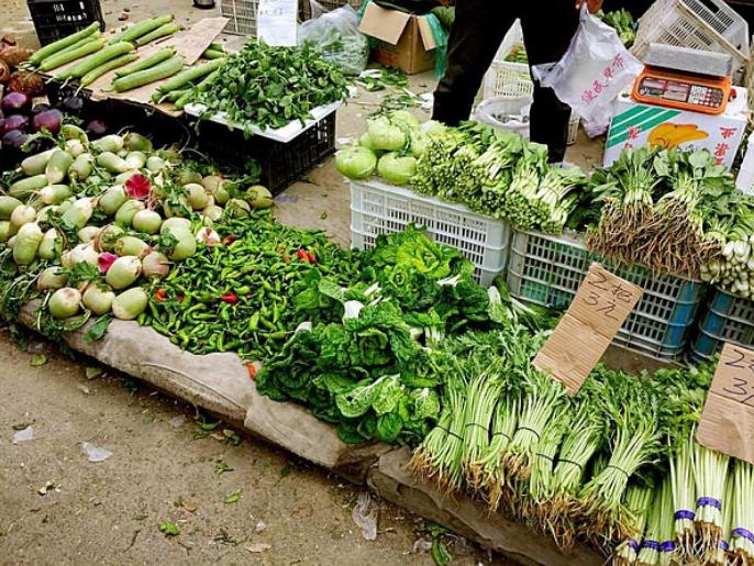 很多人寄生虫却不知爱吃蔬菜味道营养便宜